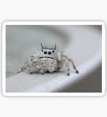 I am watching you! Sticker