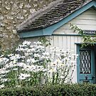 Country Cottage.....Devon UK by lynn carter
