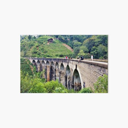 Railway bridge in Sri Lanka Art Board Print