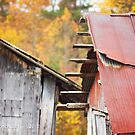 Rust by Nicole  McKinney