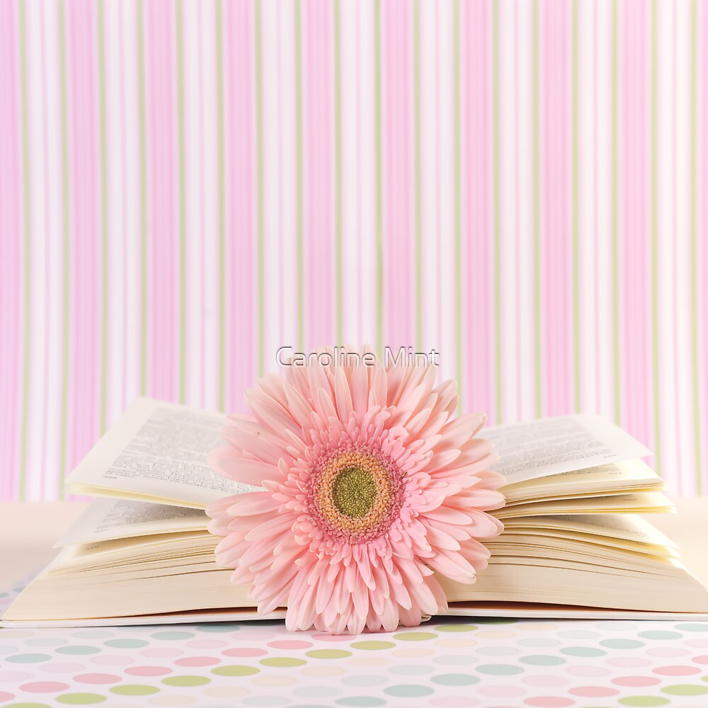 Pink Flower and Open Book  by Caroline Mint