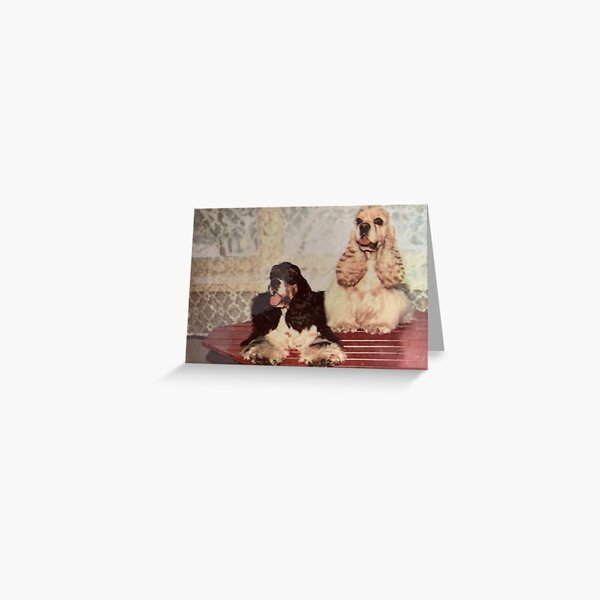 Two  babies for  spaniels. Greeting Card