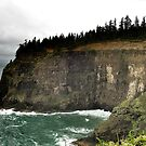 Oregon Coastline by carmstrong