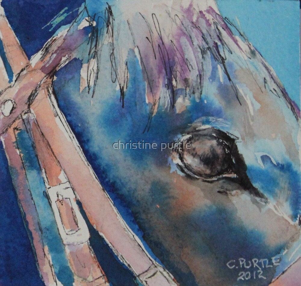 Horse up close by christine purtle