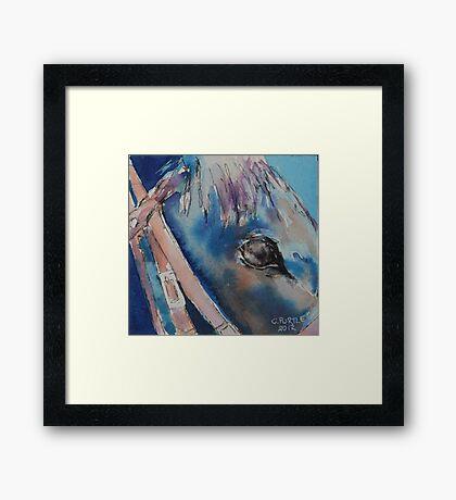 Horse up close Framed Print
