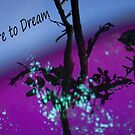 Dare to Dream by Joni  Rae