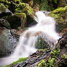 Little Waterfall by Joel McDonald