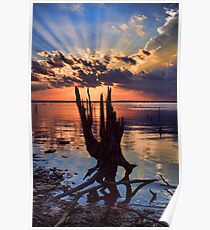 Sunset On Steroids Poster