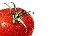Elections or a fresh tomato salad... by Bob Daalder