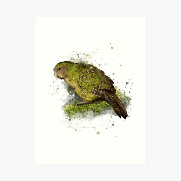 Kakapo - Owl parrot Art Print