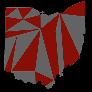 Ohio Poly Art by JoeRogoff