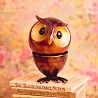 Thoughtful owl on a pile of books by Zoe Power
