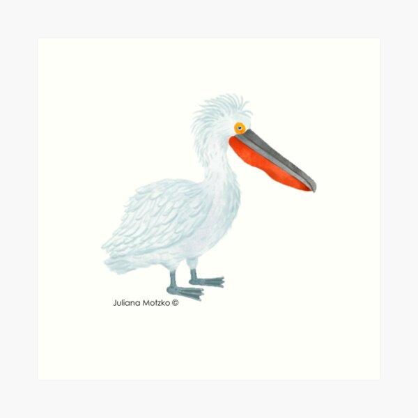 Dalmatian Pelican Art Print