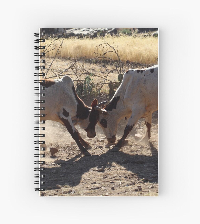 Fighting Bulls by Zosimus