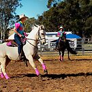 Team Penning #1 ~ Canowindra NSW by Rosalie Dale