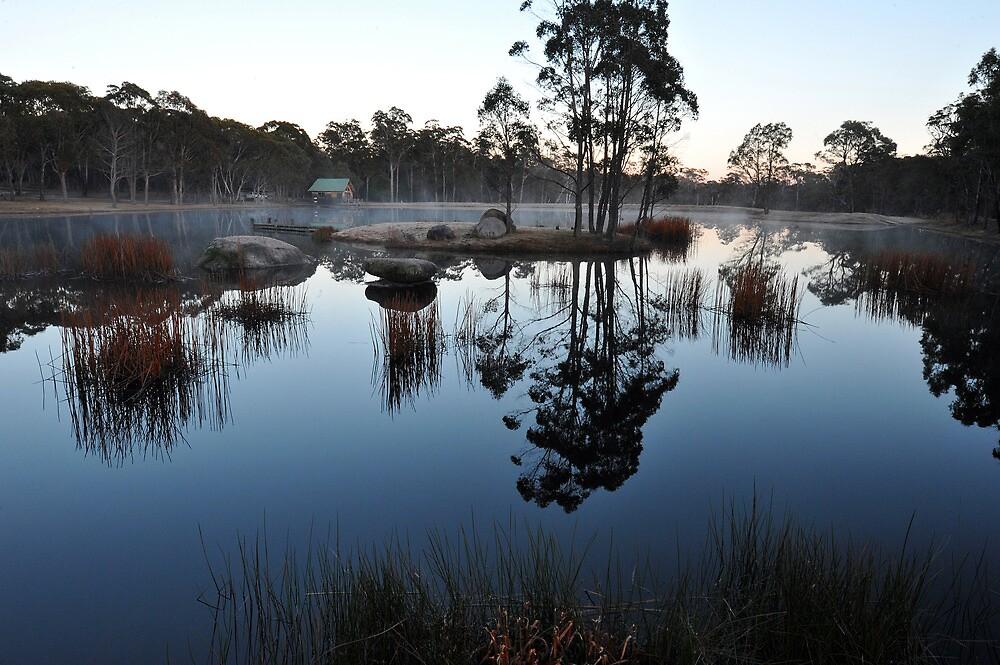 Bush Retreat At Dawn. Tenterfield, NSW, Australia by Ralph de Zilva