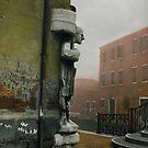 Venice Sentinel by Barbara Wyeth