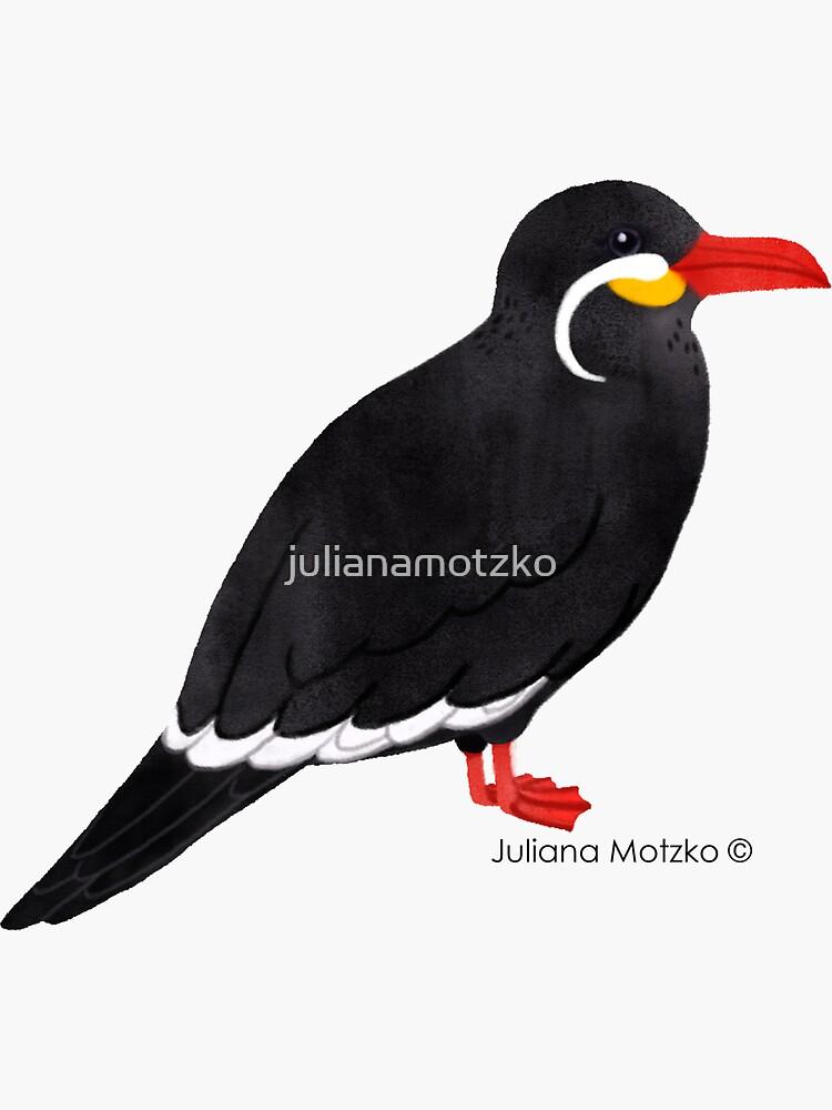 Inca Tern  by julianamotzko