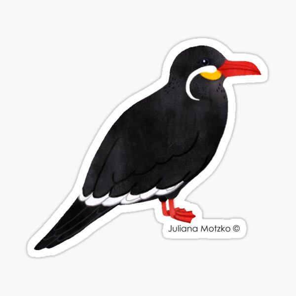 Inca Tern  Sticker
