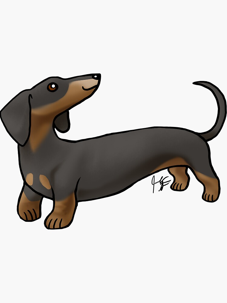 Smooth Coat Dachshund - Black and Tan by jameson9101322