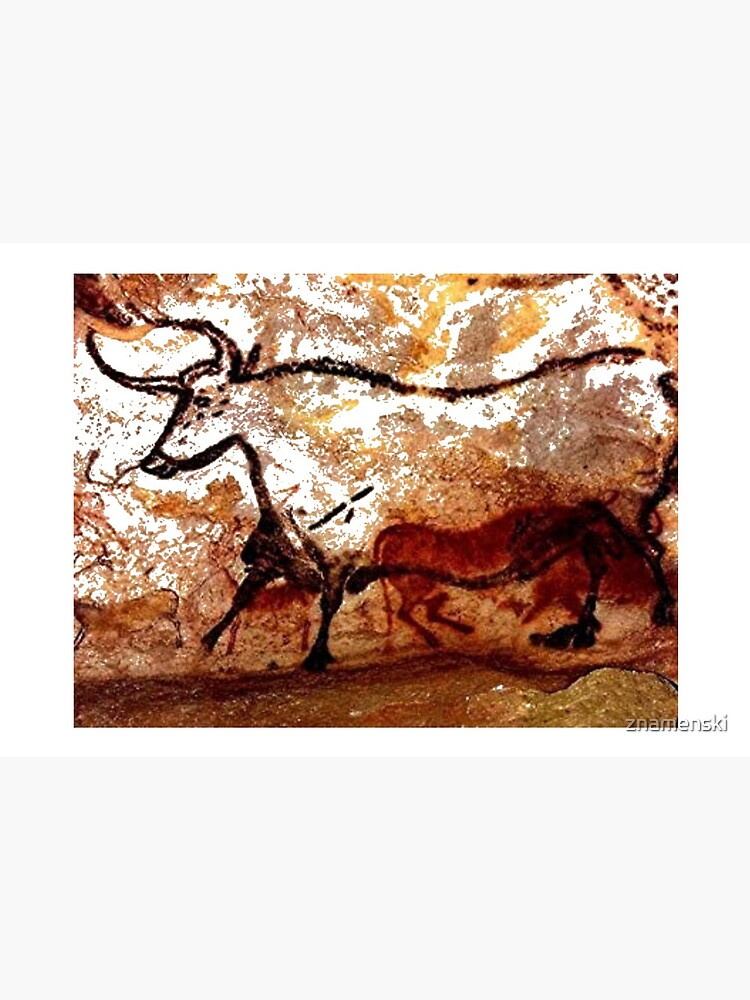 #Lascaux #Cave #Paintings #Bull LascauxCave PaintingsBull LascauxCavePaintingsBull CavePaintings CaveDrawings drawings by znamenski