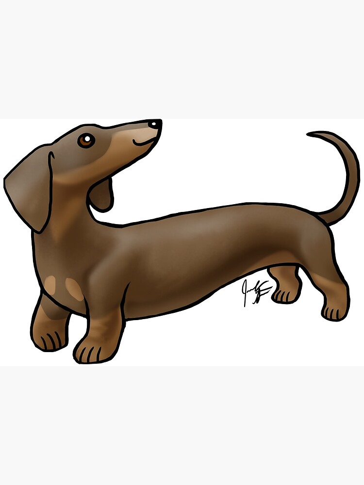 Smooth Coat Dachshund - Brown and Tan by jameson9101322