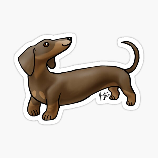 Smooth Coat Dachshund - Brown and Tan Sticker