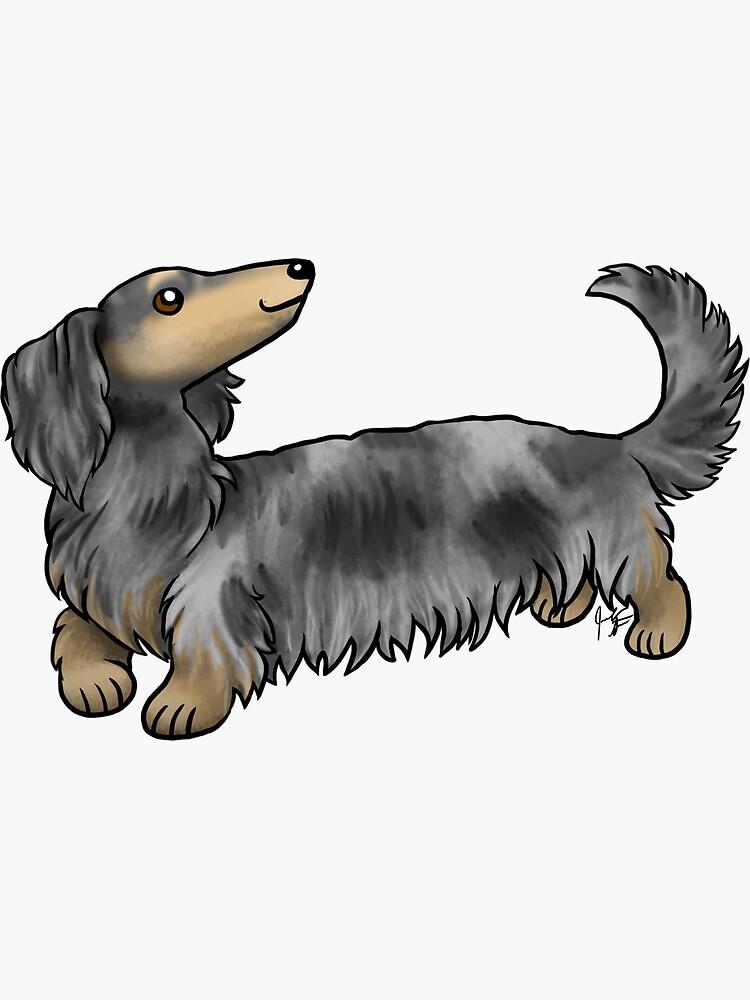 Long Haired Dachshund - Dapple by jameson9101322