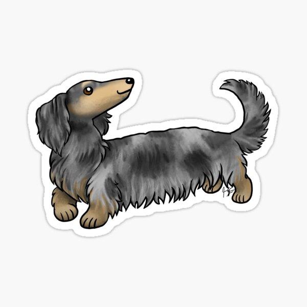 Long Haired Dachshund - Dapple Sticker