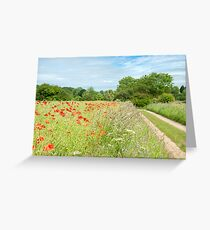 Cotswold Countryside Greeting Card