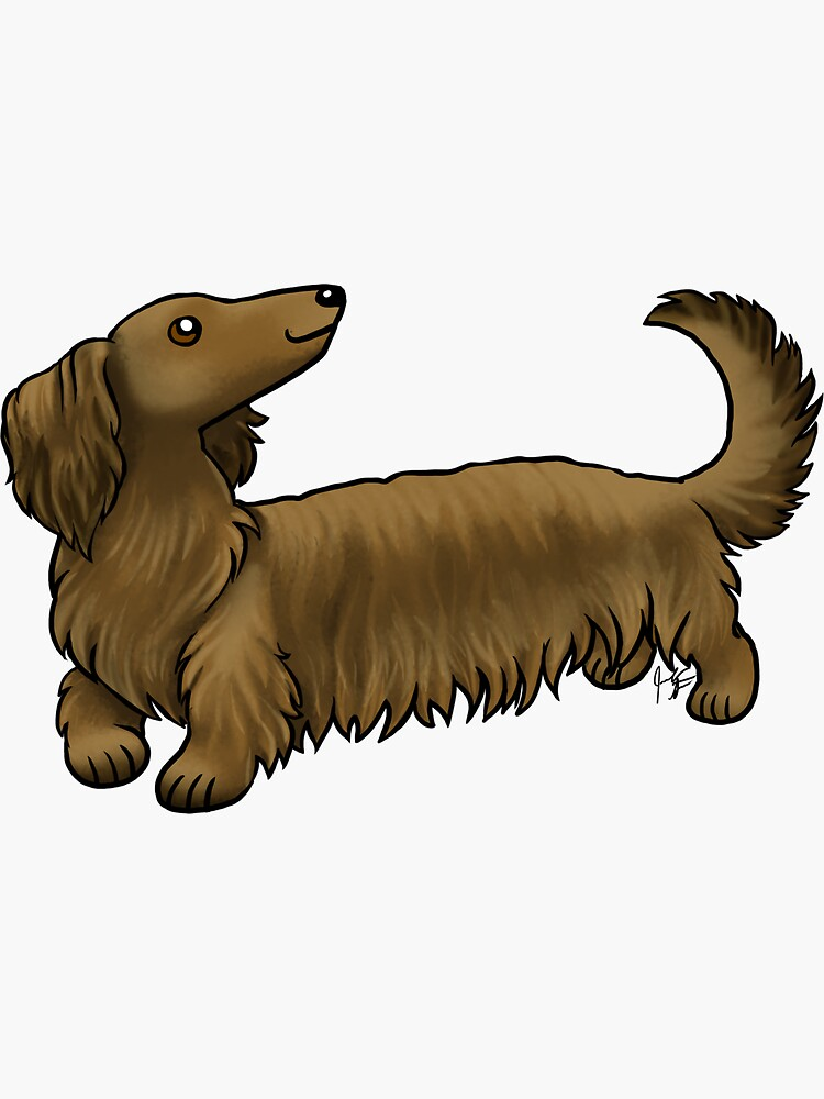 Long  Haired Dachshund - Brown by jameson9101322