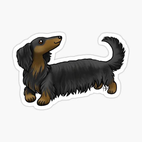 Long Haired Dachshund - Black and Tan Sticker