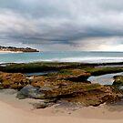 Koonya beach  by Stephanie Johnson