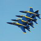 U.S. Navy Blue Angels by Marija