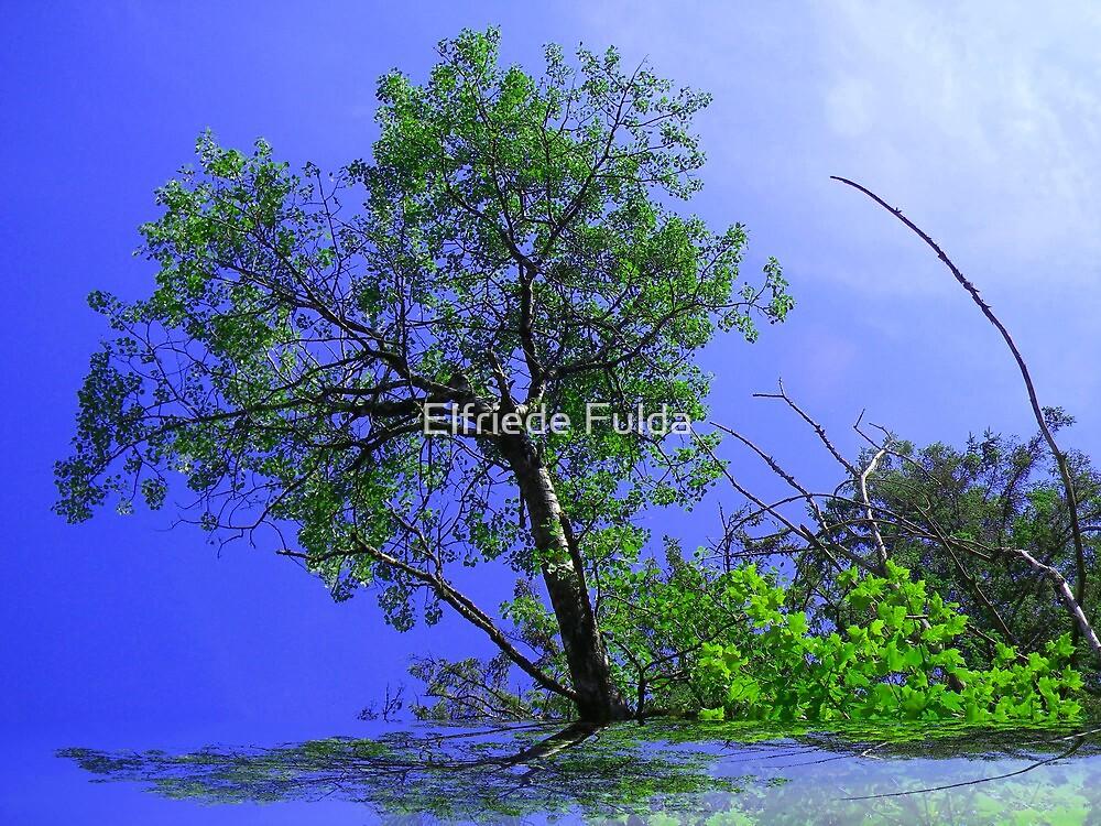 Tree of Life ! by Elfriede Fulda