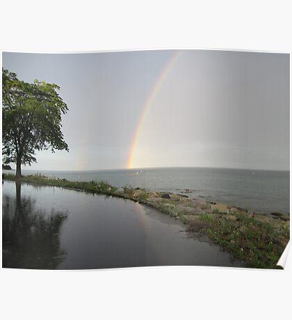 Rainbows Poster