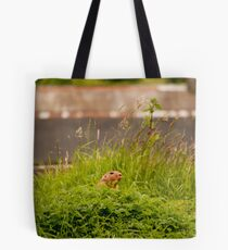 Prairie dog Tote Bag