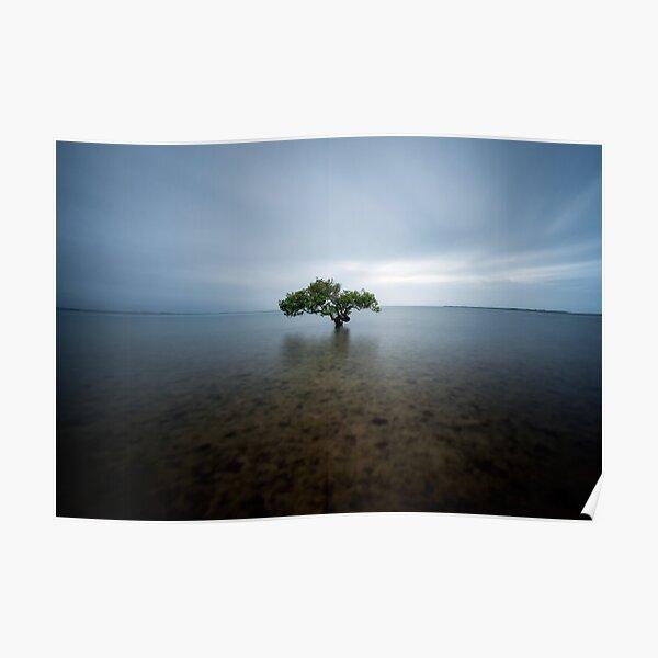 """I Stand Alone"" ∞ King Island, QLD - Australia Poster"