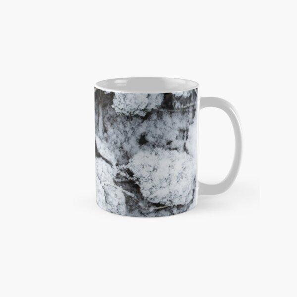 Snow Covered Fern Classic Mug