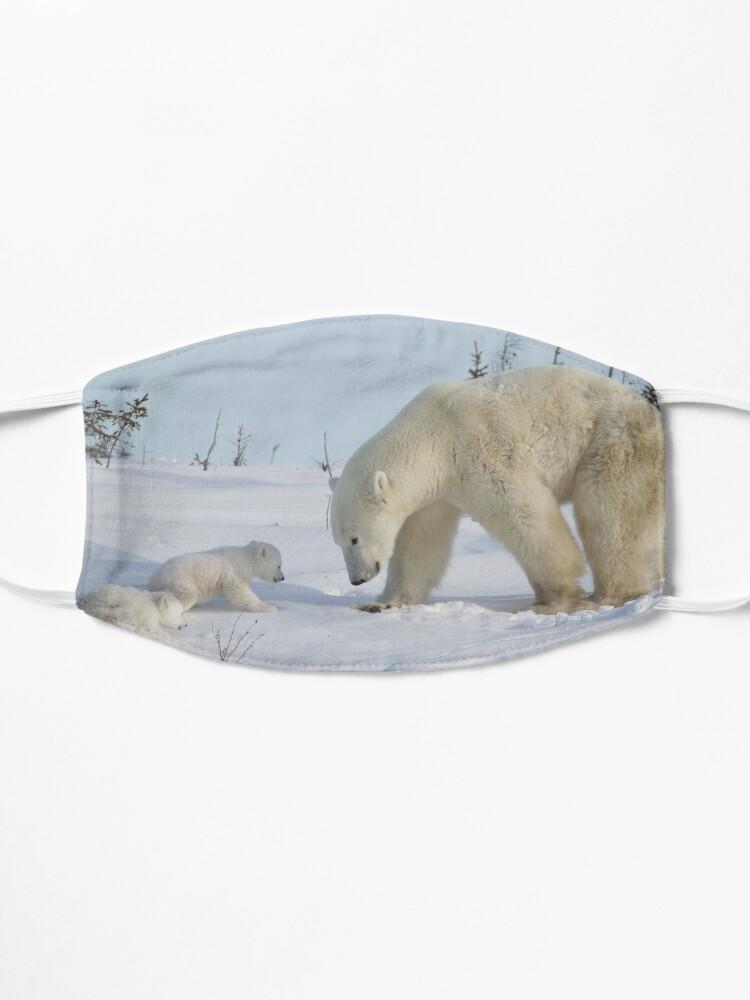 Masque ''Mère ours polaire veille sur ses deux petits nouveau-nés': autre vue