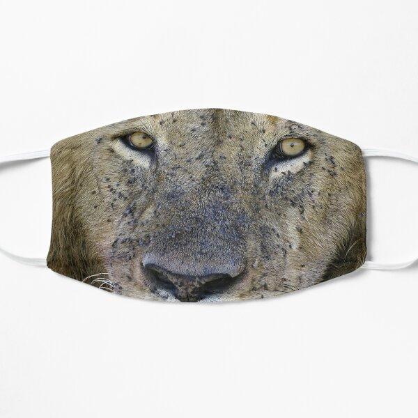 Lion Masque sans plis