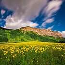 As the World Spins - Crested Butte, CO by Ryan Wright