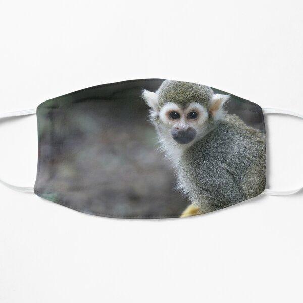 Squirrel monkey, sapajou jaune Masque sans plis