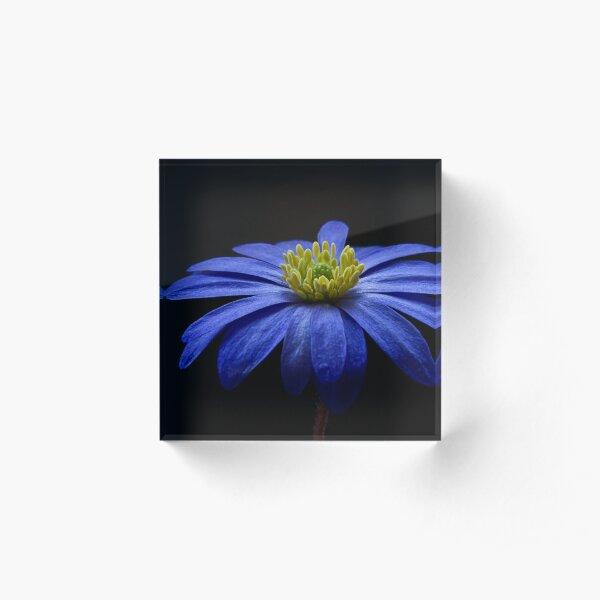 Blue Balkan Acrylic Block