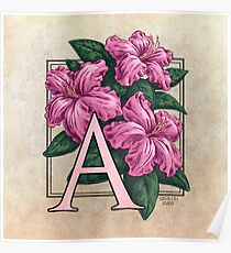 A is for Azalea Poster