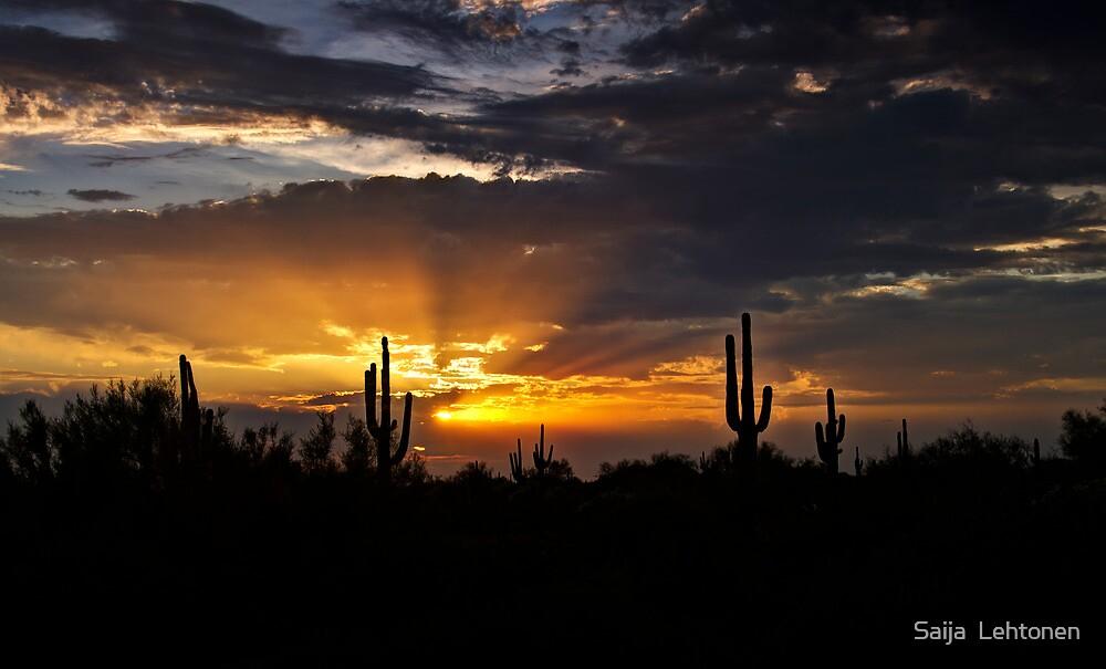 As the Sun Sets in the West  by Saija  Lehtonen