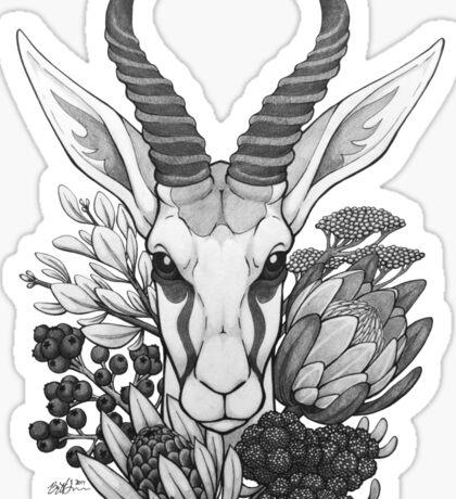 Springbok & Fynbos Sticker