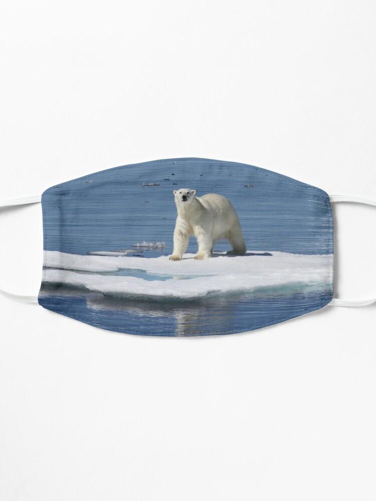 Masque ''Polar bear on the ice with his kill': autre vue