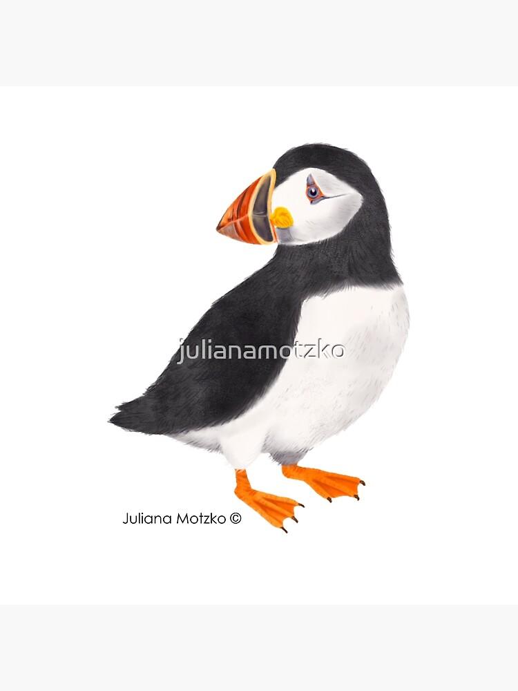 Puffin by julianamotzko