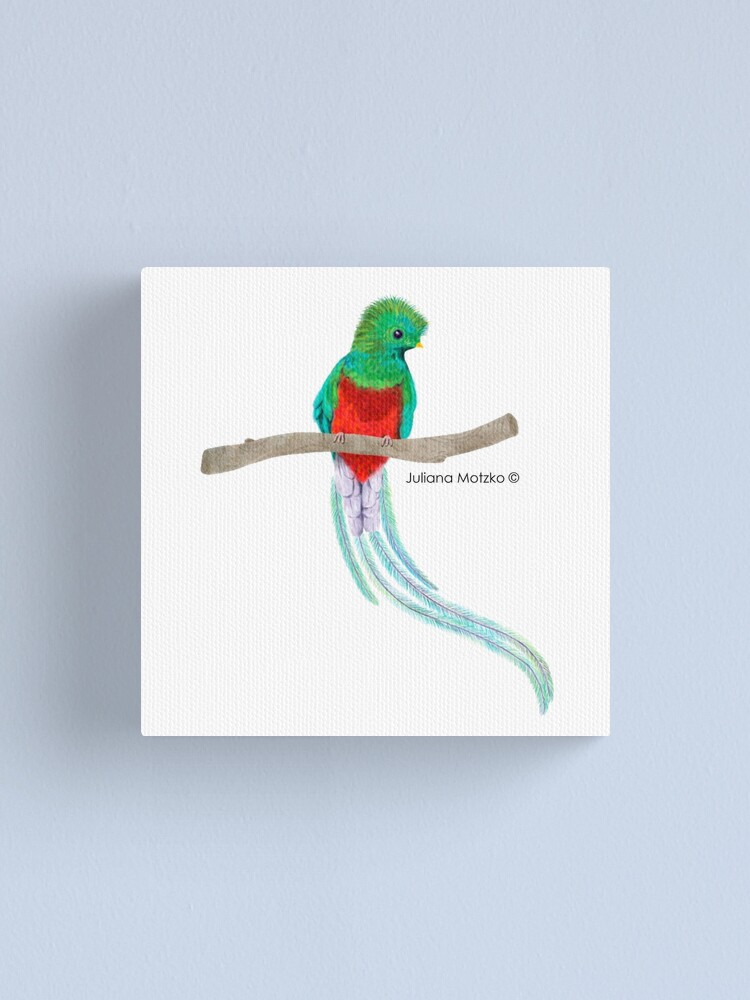 Alternate view of Quetzal Bird Canvas Print